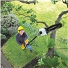 Ryobi APR-04 Expand It Pruner Attachment